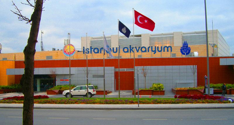 İstanbul-akvaryum-giris-ucreti