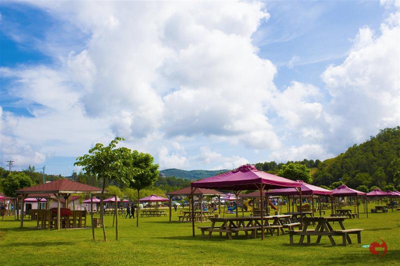 Cumhuriyet Park Piknik Alanı