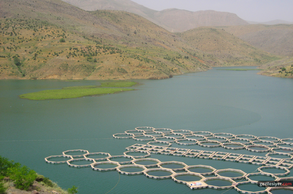 Çat Barajı
